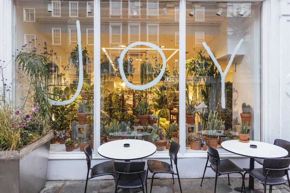Joy by Stevie Parle in Marylebone